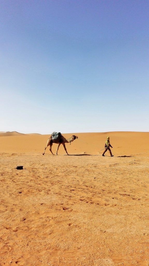 Ung mand trækker afsted med sin kamel og sine ejendele i Sahara. Foto: Birgitte Bruun