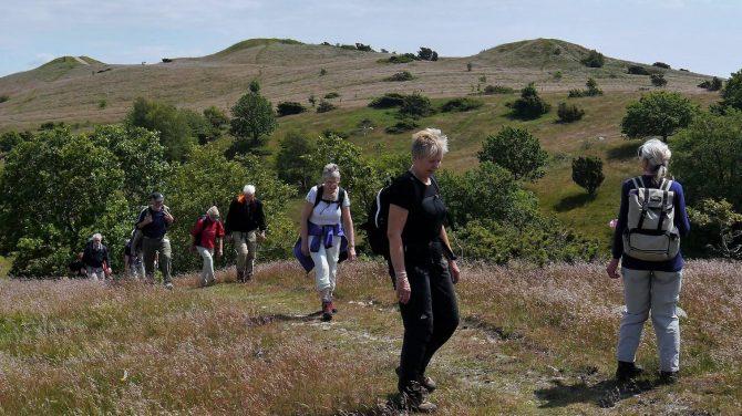 Mols Bjerge med Dansk Vandrelaug. Foto: