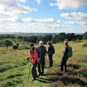 Find en vandretur i Dansk Vandrelaug