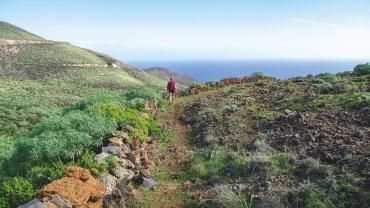 Der venter store oplevelser på De Kanariske Øer. Foto Lis Nielsen