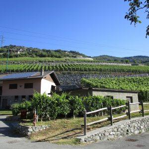 2. etape af den italienske Camino