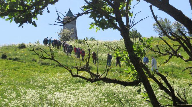 Vi kigger ofte op og ud, som her ved Todbjerg Tårnet. Foto Preben Simonsen