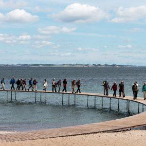Den uophørlige vandring. Fotokonkurrencen 2018. Foto Sten Porse