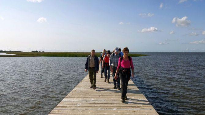 Fra Hindø i Stadil Fjord Foto Vagn Olsen Tag med på tur i Region Midtjylland