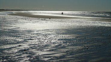 Kystvandring i det sydvestlige Jylland. Foto Michal J.N. Lassen Vandrernes Dag i Region Syddanmark