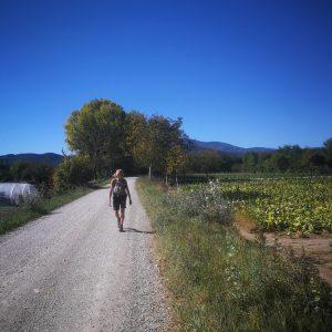 Afsted under den blå himmel på Cammino de San Fransesco-turen.Foto Hans Henrik Kleinert.