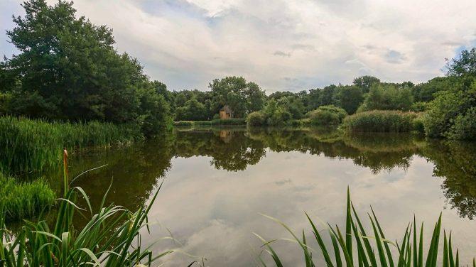 DVL Aalborg besøger Dronninglund Møllesø og Naturpark