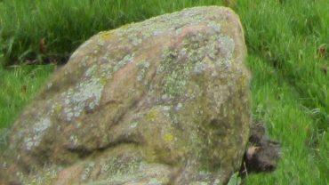 Haurum Stenen er på programmet til Vandrernes Dag.