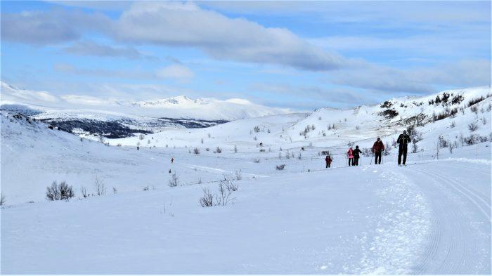 DVL på ski på højfjeldet Ruten 2019. Foto Bente Michelsen