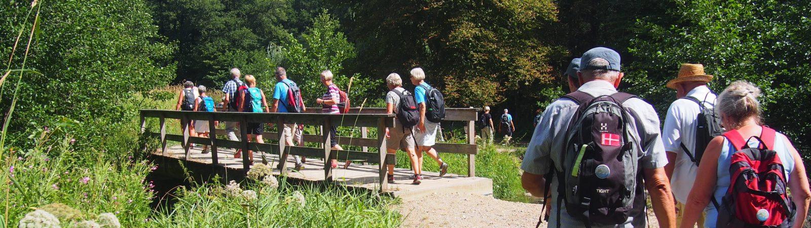 På vandretur i Hansted Skov. Foto Gerda Kyed