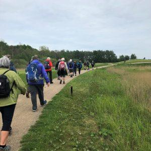 Kalvebod Fælled er også værd at gå efter på vandretræf 2019. Foto Conny Rom.