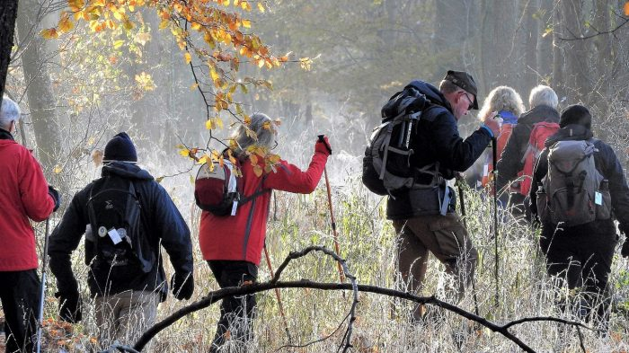 Nærvær i naturen i klingende frost giver overskud og godt humør. Foto Jens Arrent