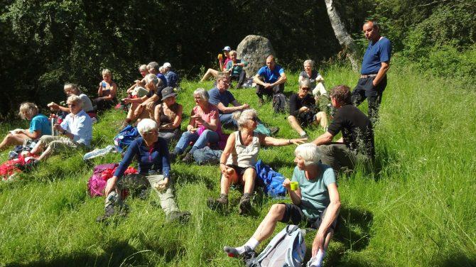 Vandrere holder pause i Tisvilde Hegn, hvor snakken stadig går. Foto Vagn Olsen (når du går)
