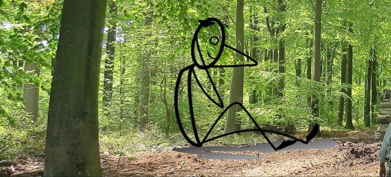 Vandre i bøgeskov eller gymnastik? Foto Bente Michelsen/Pixabay