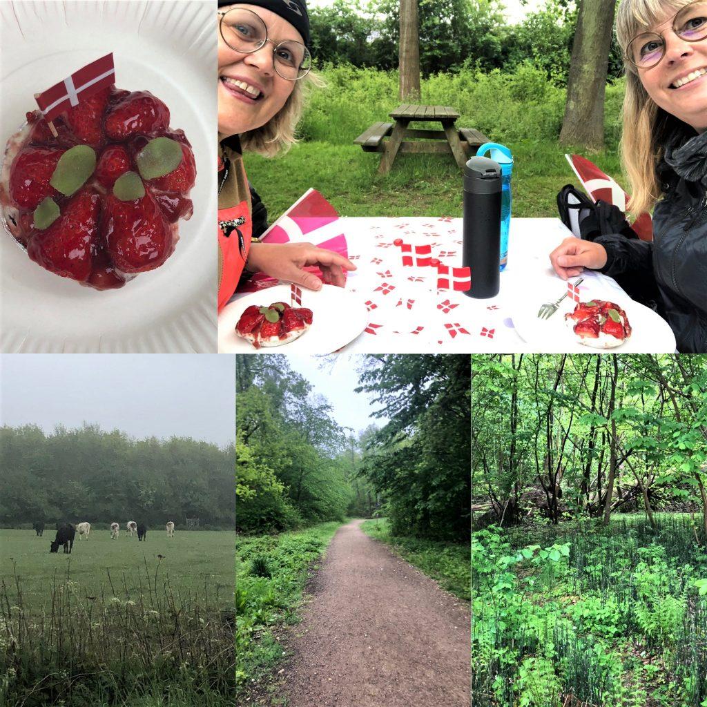 - Vi fejrede dagen med en skøn gåtur i Kohaveskoven (Odense SØ)