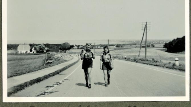 Godt selskab på vejen ved Høve Stræde. Foto Helge Prehn, fra hans dagbog
