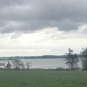 Turen startede i Arnakke og via Ågerup Kirke gik jeg rundt om det nye vådområde i Tempelkrogen kaldet Tempelkrogprojekt Nord. Foto Jens Folke