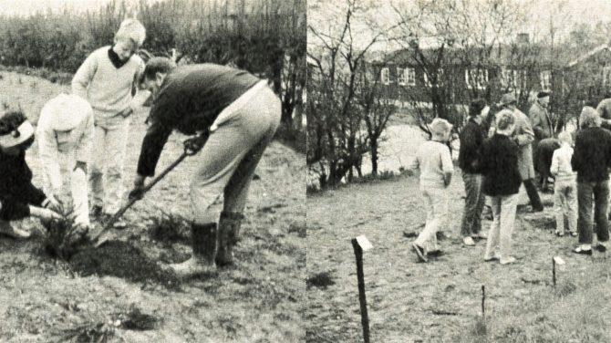 Der bliver plantet træer ved Laugsgården ved 40-årsdagen. Foto DVL's arkiv