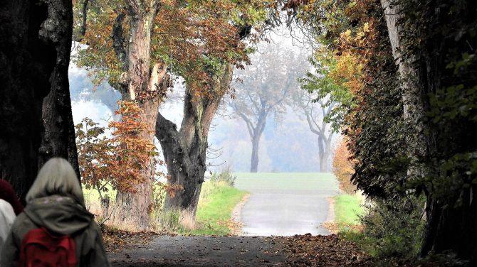 Port til efterårets vandreture. Foto Jens Arrent.