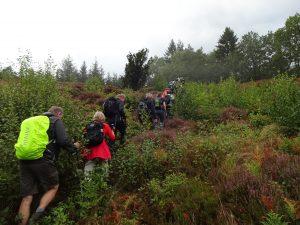Optur ved Himmelbjerget - en af mange veje til toppen. Foto Vagn Olsen.