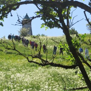 På vej til Todbjerg Tårnet nord for Aarhus. Foto Preben Simonsen