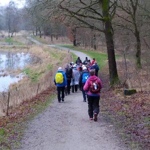 DVL Fyn anbefaler vandreture i Odense og omegn. Her på tur langs Ryds Å og Stavis Å februar 2019