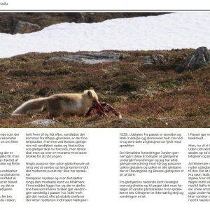 Side 220 og 221 fra René Ljunggrens bog om Kenekaisefjeldene