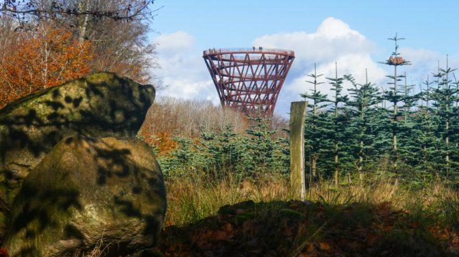 Skovtårnet i Denderup Vænge. Foto Karen Schmolke