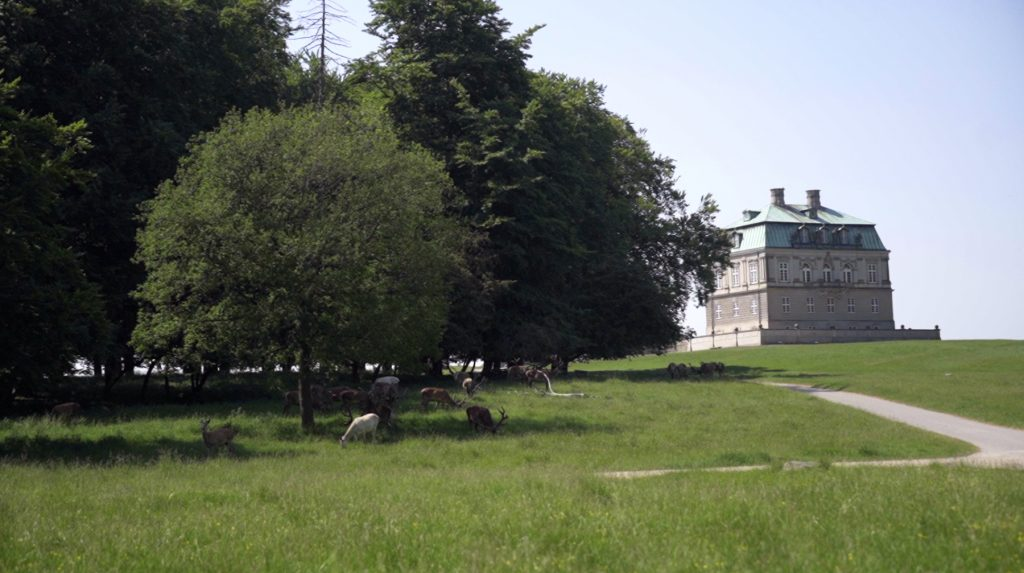 Eremitageslottet ligger midt på Eremitagesletten, hvor man kan se græssende hjorte på turen via Mølleåen og Dyrehaven