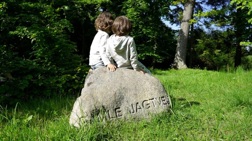 Man skal ikke tro, at man kan vandre ruten i Hareskoven tjept og effektivt med børn. For der træer der skal klatres i, og sten der skal siddes på.