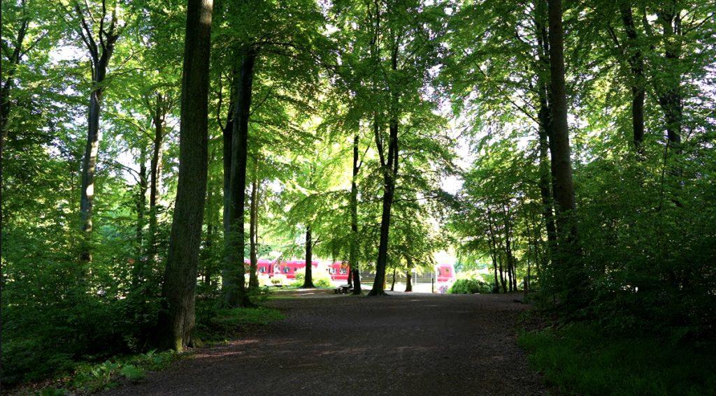 Hareskov S-togsstation ligger lige midt i skoven.