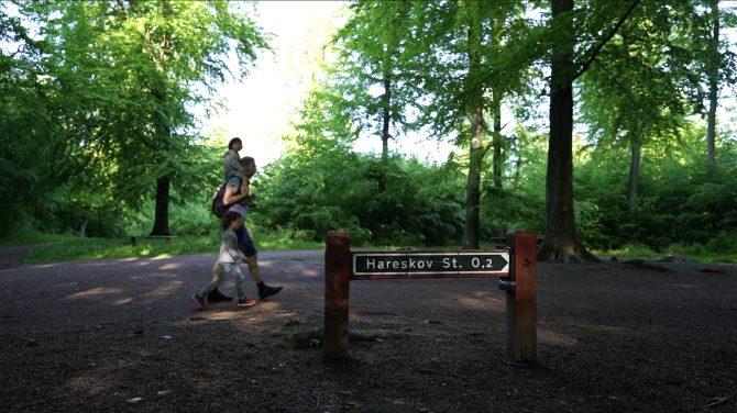 Sidste lille strækning - med lidt vandrehjælp for nogle. Foto Majbrit Søgaard