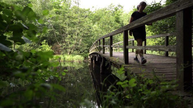 Når man som artiklens forfatter er fra Silkeborg og vant til Gudenåens høje broer, så føles det som en gave, at gå over Mølleåens lave broer, hvor man kommer helt tæt på vandet og åens natur.