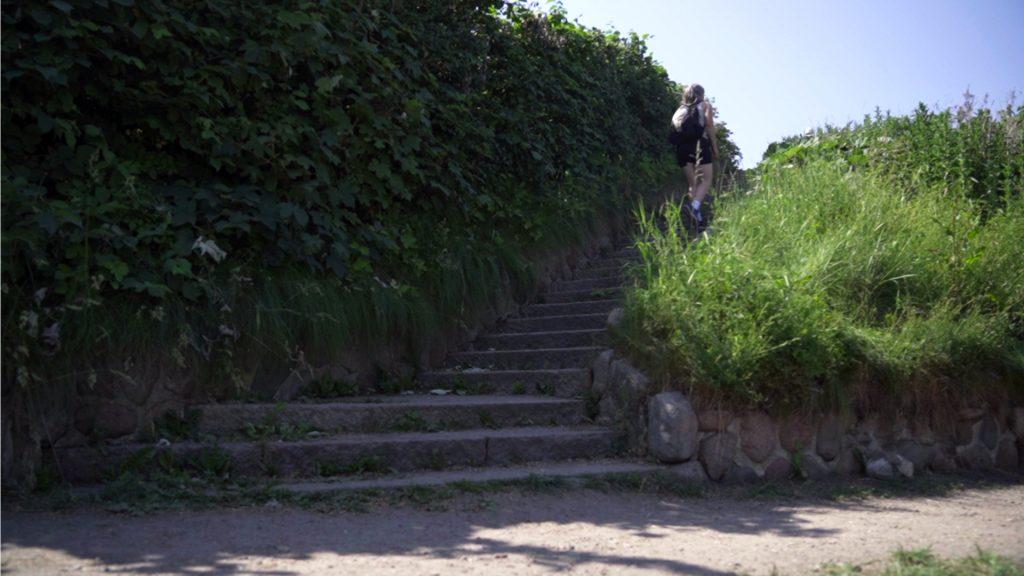Fra Øresundskysten går det op ad trapperne før man krydser Strandvejen og kommer tilbage i Dyrehaven. Blandt andet på grund af trapperne er det en tur for de rørige.