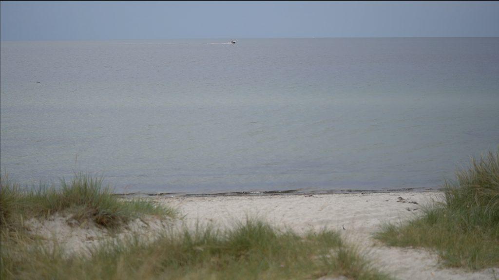 Strandpark Køge Bugt minder stedvis om en lille udgave af Vesterhavet.