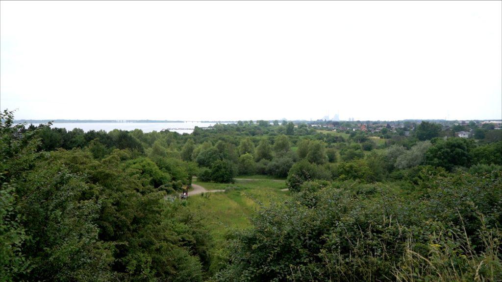 Der er en flot udsigt fra Bjerget. Her ser man ud over Kystagerparken og mod syd.