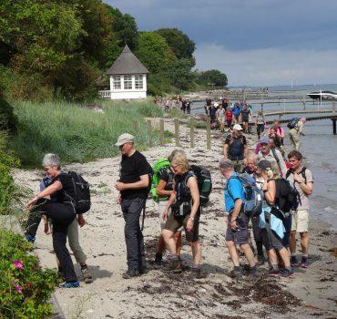 Strand syd for Vedbæk