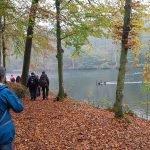 Vandrere og sorte svaner ved Letbæk sø
