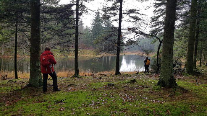 Lille sø set fra skovstien i Klosterheden. Et eksempel på det der blev mødt i den smukke natur.
