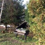 Turen gik forbi Forundringens have. Spændende sted. Besøg her på turen til Hundeskoven.