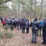 De 118 vandrere er samlet på den sidste del af topturen, Husby klitplantage