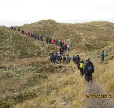 118 vandrere på vej mod Vesterhavet på topturen, Husby klitplantage