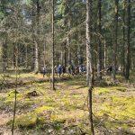 DVL vandretur 170421 - Kløverstivandring Skjern-Tarm sort rute. Tarm Plantage.