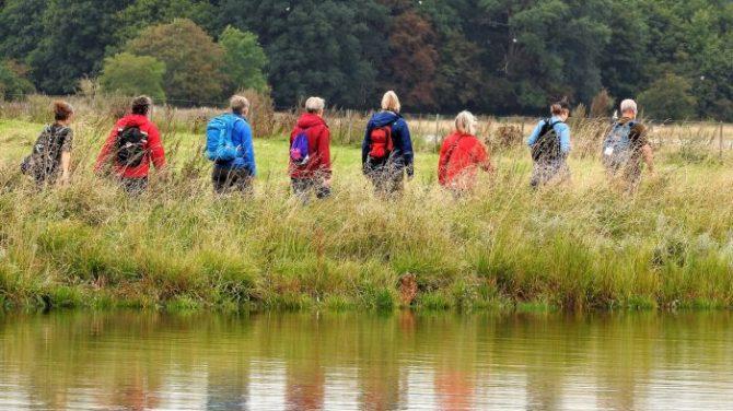 Otte i fællesskab langs Roskilde Fjord. Foto Jens Arrent