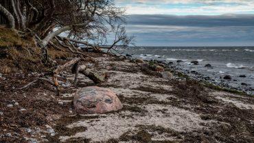 Stranden Sibirien. Foto Leif Jensen