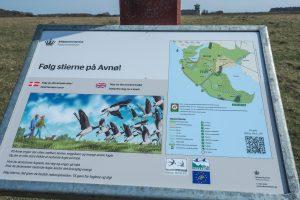 Følg stierne på Avnø