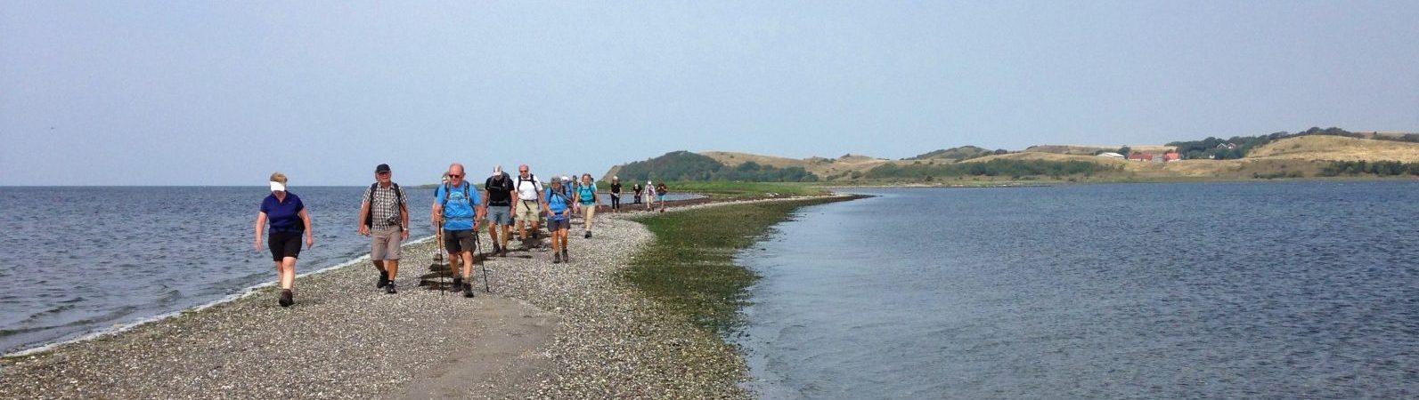 Vand, strand og vand Nekselø Foto Lis Mejlby
